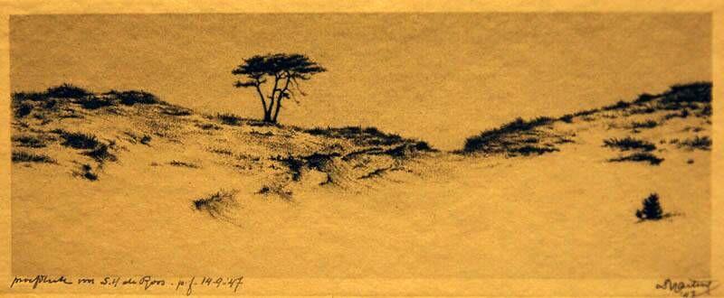Duinen met eenzame boom