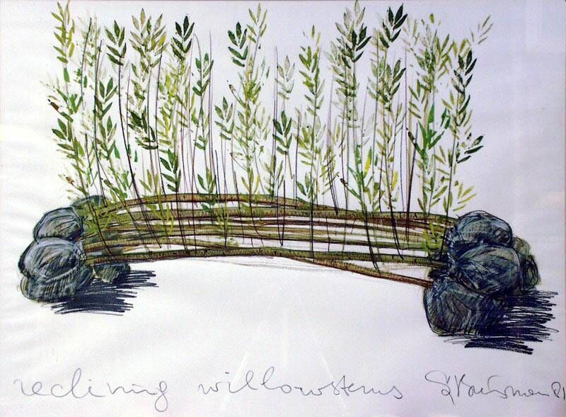 Reclining Willowstems B